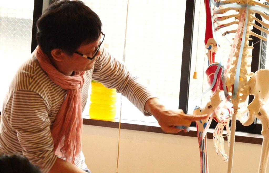 ヨガ解剖学テーマ別肩・股関節の連動の講座風景。講師(内田かつのり)が全身骨模型にマスキングテープをはり筋肉の仕組みを説明している様子